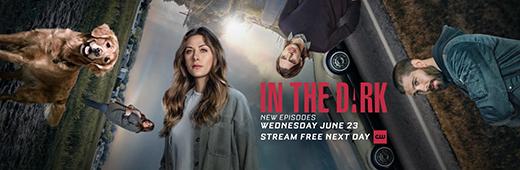 In The Dark 2019 S03E13