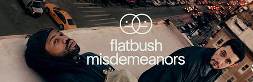 Flatbush Misdemeanors Season 1