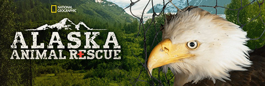 Alaska Animal Rescue S02E07 WEBRip H264-BOOP